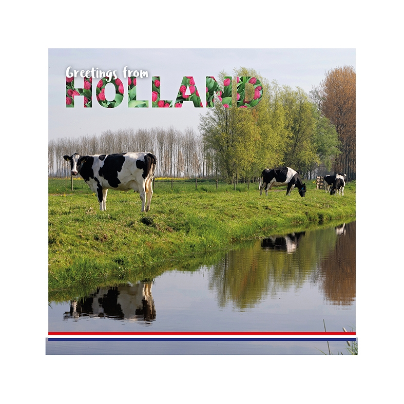 Greetings from Holland - Cows