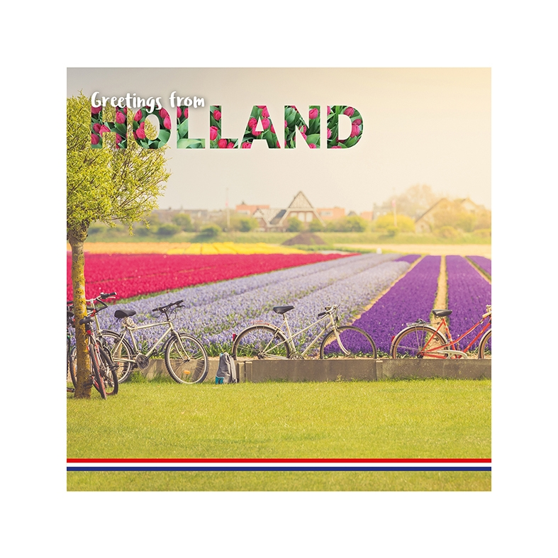 Greetings from Holland - Tulip fields Lisse