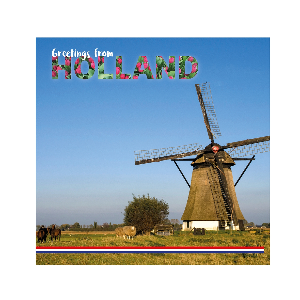 Greetings from Holland - Mill